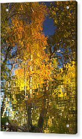 Reflections Of Fall - Grasshopper Point Acrylic Print