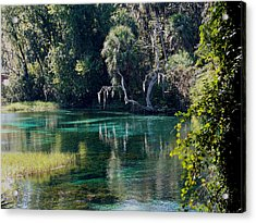 Reflections Of Rainbow Springs 2 Acrylic Print