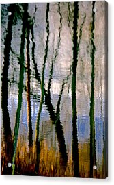 Reflections Of The Forrest Acrylic Print by Gillis Cone