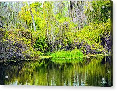 Acrylic Print featuring the photograph Reflections On A Beautiful Day by Madeline Ellis
