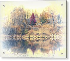 Reflections On A Pond - 2 Acrylic Print by Diane M Dittus