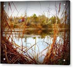 Reflections On A Pond -3 Acrylic Print by Diane M Dittus