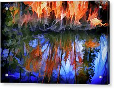 Reflections On A Small Pond Acrylic Print by Mick Anderson