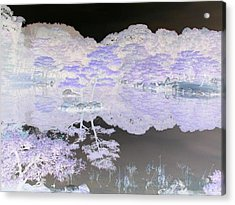 Reflections On A Surreal Pond Acrylic Print by Curtis Schauer