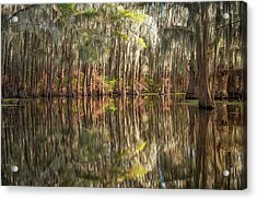 Reflections On The Bayou Acrylic Print