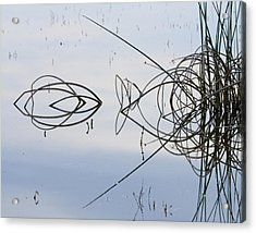 Reflections One Acrylic Print by Charlie Osborn