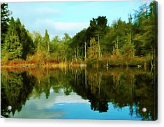 Acrylic Print featuring the digital art Reflections by Timothy Hack
