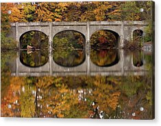 Acrylic Print featuring the photograph Reflections by Timothy McIntyre