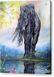 Reflective Beauty Acrylic Print