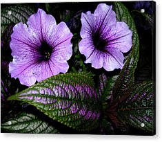 Acrylic Print featuring the photograph Reflective Infusion by Randy Rosenberger