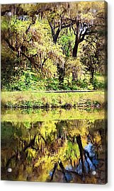 Acrylic Print featuring the photograph Reflective Live Oaks by Donna Bentley