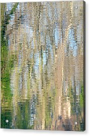 Acrylic Print featuring the photograph Reflet Rhodanien Pastel 3 by Marc Philippe Joly