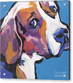 Regal Beagle Acrylic Print by Lea S