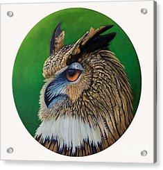 Regal Gaze Acrylic Print by Brian  Commerford