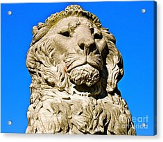 Regal Lion Acrylic Print by E Robert Dee