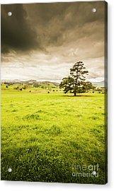 Regional Rural Land Acrylic Print