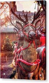 Reindeer At Copenhagen Christmas Market Acrylic Print
