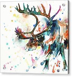 Acrylic Print featuring the painting Reindeer by Zaira Dzhaubaeva