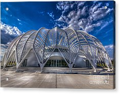 Reinforced Technology Acrylic Print by Marvin Spates