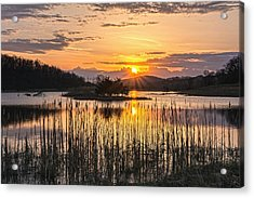 Rejoicing Easter Morning Skies Acrylic Print by Angelo Marcialis