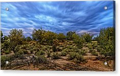 Acrylic Print featuring the photograph Rejuvenation Op19 by Mark Myhaver