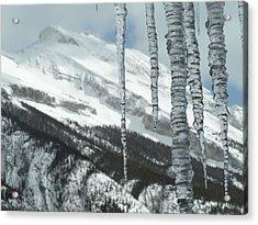 Relative Processes Acrylic Print