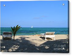 Acrylic Print featuring the photograph Relax And Enjoy by Edward R Wisell