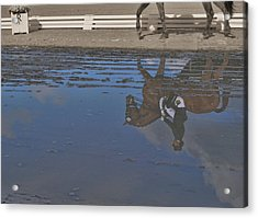 Relaxation Mirrored Acrylic Print by JAMART Photography