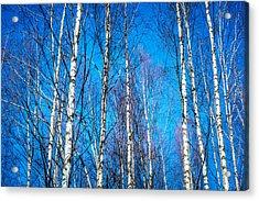 Reliever Acrylic Print by Matti Ollikainen