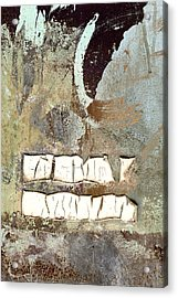 Remains Unsaid Acrylic Print by Carol Leigh