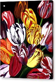 Rembrandt Tulips Acrylic Print