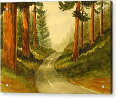 Remembering Redwoods Acrylic Print by Marilyn Jacobson