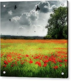 Remember #rememberanceday #remember Acrylic Print