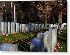 Remembrance Day Military Cemetery Flags Acrylic Print by Paul Wash