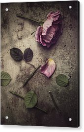 Acrylic Print featuring the photograph Remnants by Amy Weiss