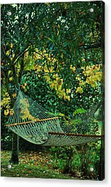 Remnants Of Summer Acrylic Print by Trudi Southerland