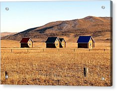Remote Mongolia Acrylic Print by Diane Height
