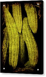 Renaissance Chinese Cucumber Acrylic Print