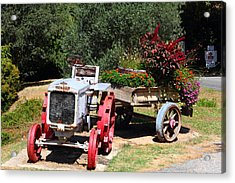 Renault Flower Bed Acrylic Print by Richard Patmore