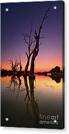 Acrylic Print featuring the photograph Renmark South Australia Sunset by Bill Robinson