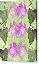 Repeated Morning Glories Acrylic Print by Rosalie Scanlon