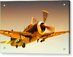Republic P-47 Thunderbolt 2011 Chino Air Show Acrylic Print by Gus McCrea