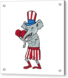 Republican Mascot Elephant Boxer Boxing Cartoon Acrylic Print by Aloysius Patrimonio