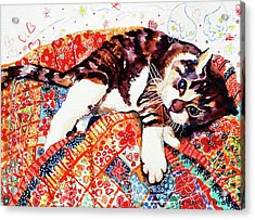 Rescue Kitten Acrylic Print by Deborah Burow