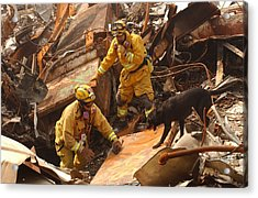 Rescue Workers From The California Task Acrylic Print