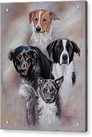 Rescued Friends Acrylic Print