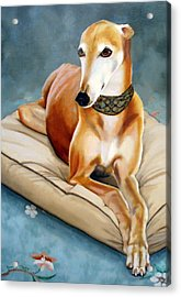Rescued Greyhound Acrylic Print