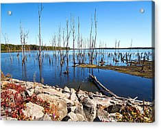 Acrylic Print featuring the photograph Reservoir by Angel Cher