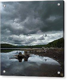 Reservoir Logs Acrylic Print