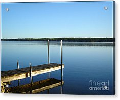 Acrylic Print featuring the photograph Reset by Debi Dmytryshyn